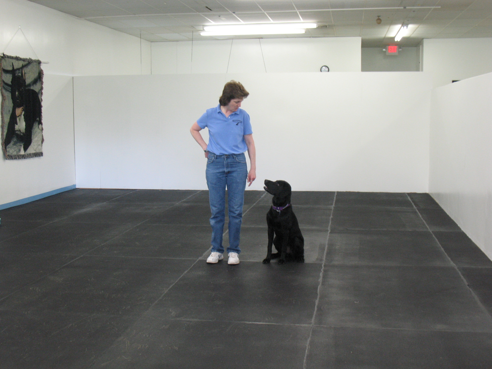 About us please call for group class schedule like us on facebook self serve dog wash solutioingenieria Gallery
